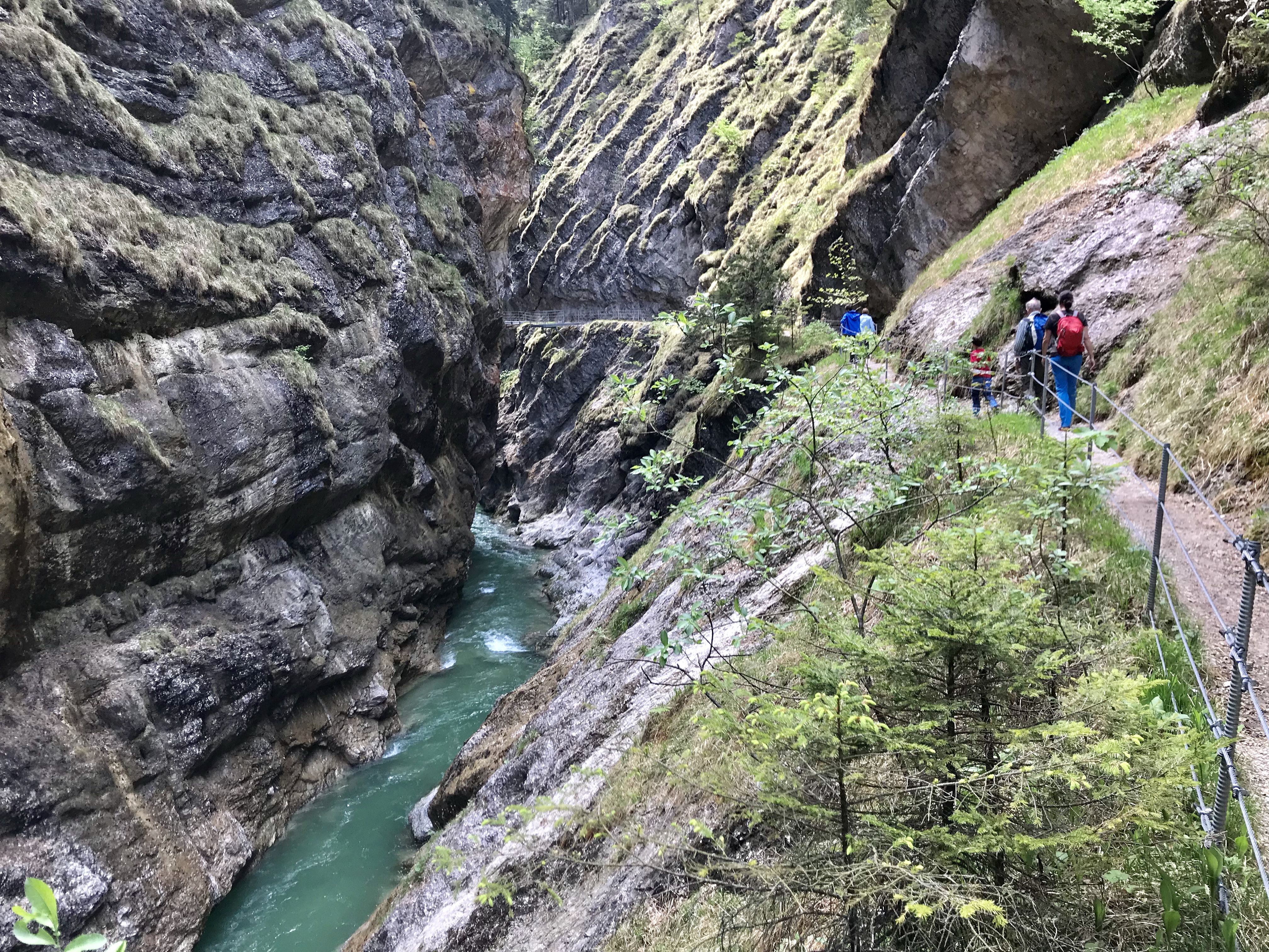Nach der Tiefenbachklamm Anfahrt erwartet dich diese tolle Natur beim Wandern