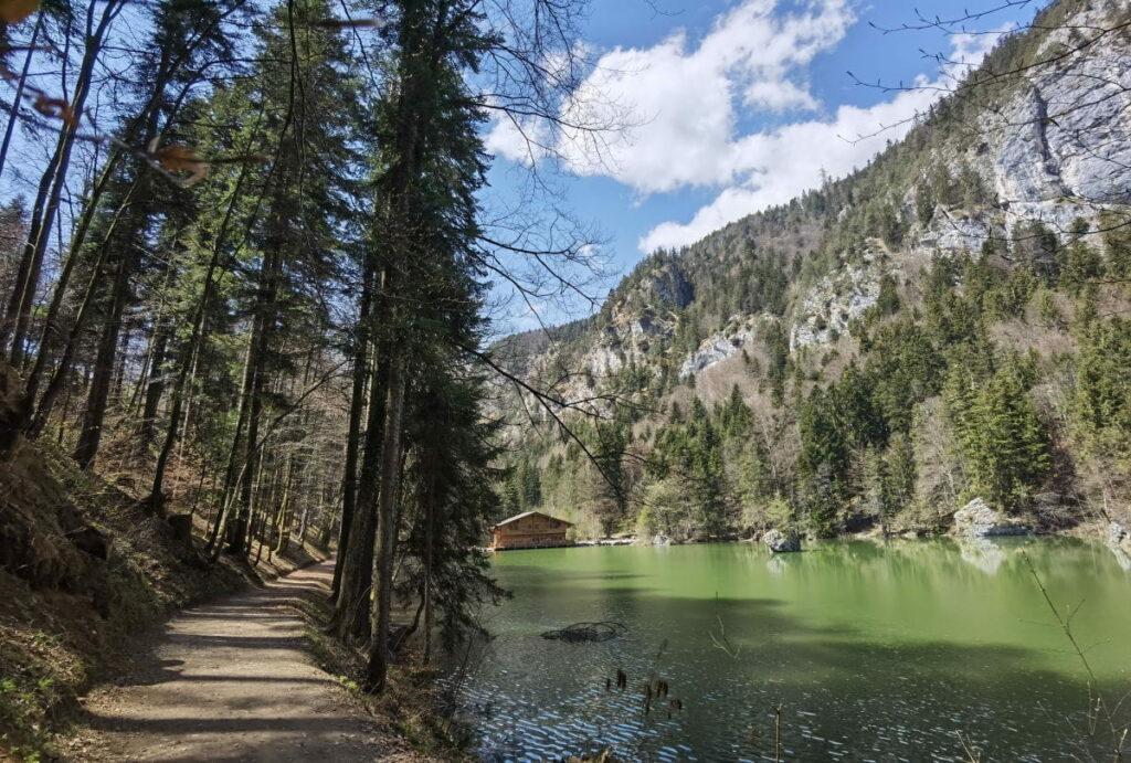 Links im Bild, der breite Wanderweg direkt am Berglsteinersee