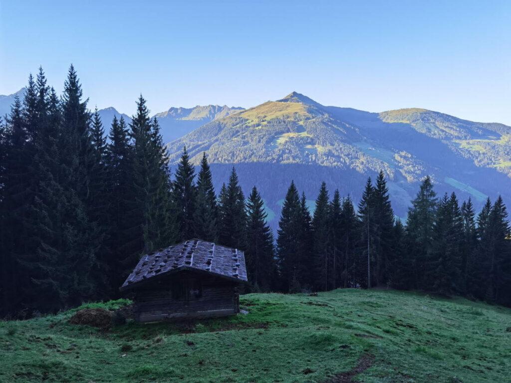 Der Blick über das Alpbachtal auf das Wiedersberger Horn (2127 m)